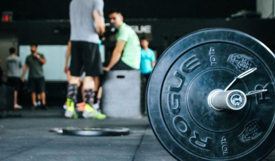 Jakich składników odżywczych potrzebują sportowcy